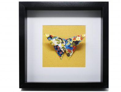 Papillon Naturalisé 2